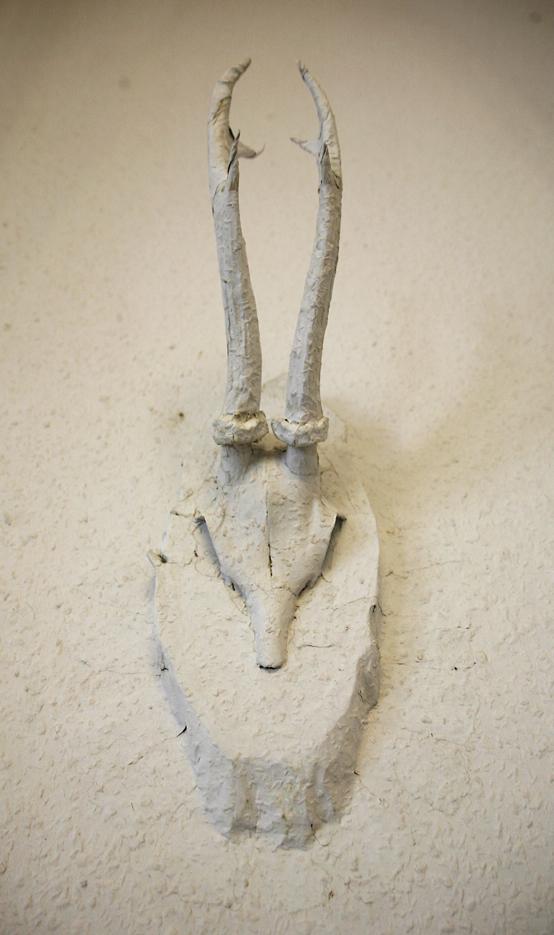 "Anja Kemker , ""Bambi 2"" , 2014, Rehgeweih, Rauhfaser tapeziert, ca. 12 x 38 x 17 cm"